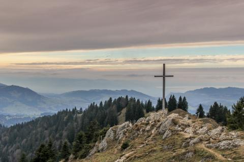 The Confusion of the Cross